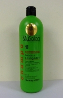 MySalon Shampoo with Linseed and Proteins