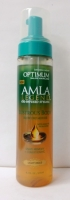 SoftSheen Carson Optimum AMLA Legend Blow Dry Mousse